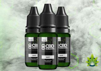 CBD Asylum: CBD Products Review and Company Guide – TimesOfCBD