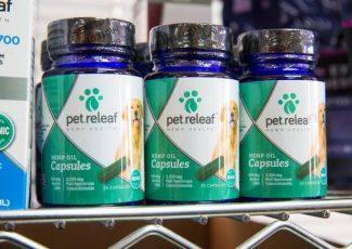 Las Vegas pet parents warming to idea of CBD products – Las Vegas Sun