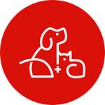 LinkResPet (OTC: LRSV) Explores Expansion Into Pet Functional Supplement Space – Nasdaq