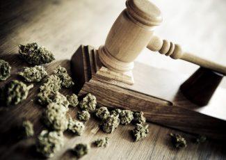 This DEA Cannabis Announcement Will Floor You – The Motley Fool