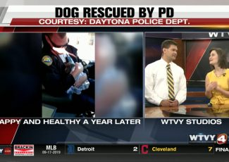 Video of policemen rescuing puppy goes viral; dog now happy & healthy – WTVY, Dothan