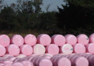Vertical marks first year with pink bales, $25K in donations – Hopkinsville Kentucky New Era