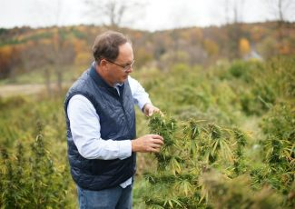 Area brewery owners to unveil line of CBD products – The Saratogian