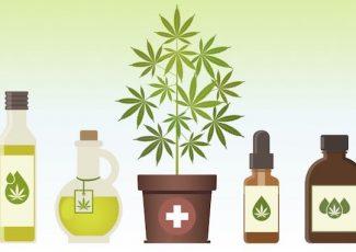 CBD Oil for Pain Management – scallywagandvagabond