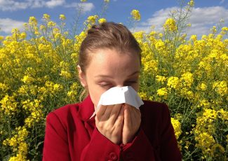 The US People are Commonly Using CBD Products for Curing Seasonal Allergies – One World Herald