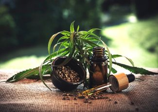 Cannabis oil extraction methods & things you should know about CBD – Flux Magazine