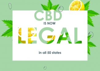 Is CBD legal? Here Is What You Need to Know – Along the Boards