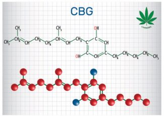 Let's talk about CBG – Boulder Weekly