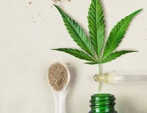 What does legal limbo mean for CBD? – FoodNavigator.com