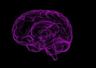Curious Marijuana Effects On Brain Performance – LoudCloudHealth