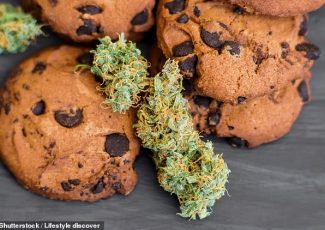 Doctors in Canada warn cannabis edibles dangerous if taken with alcohol, sleeping pills, opiods – Daily Mail