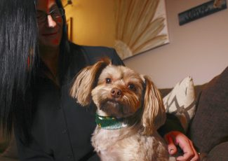 Researchers: Some pet products touted as CBD don't have any – WTOP