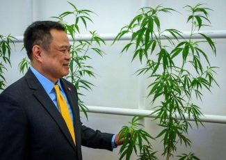 Thailand rolls out cannabis clinic based on traditional medicine – New Straits Times