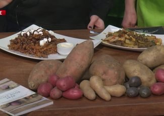 Tuesday at the Farm Show – ABC27