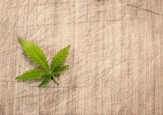 Will The UK Legalise Cannabis In The Next Decade? – Shout Out UK